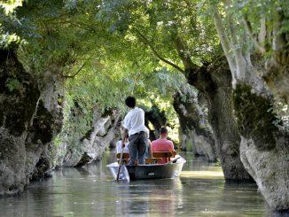 Marais Poitevin : La Venise Verte